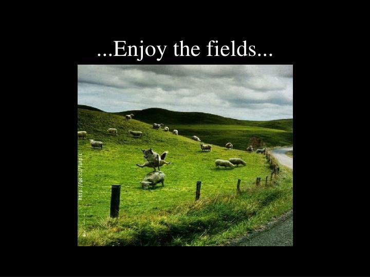 ...Enjoy the fields