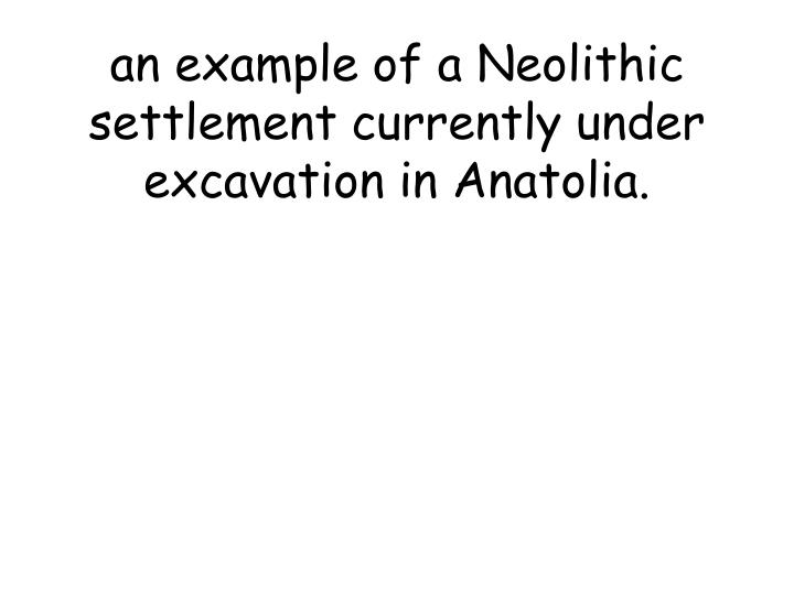 an example of a Neolithic settlement currently under excavation in Anatolia.