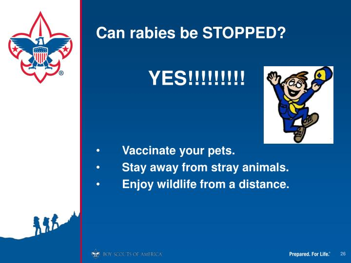 Can rabies be STOPPED?