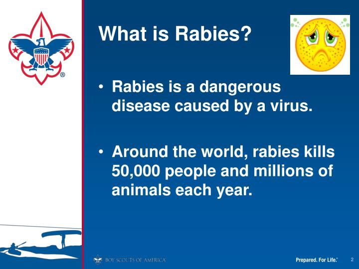 What is Rabies?