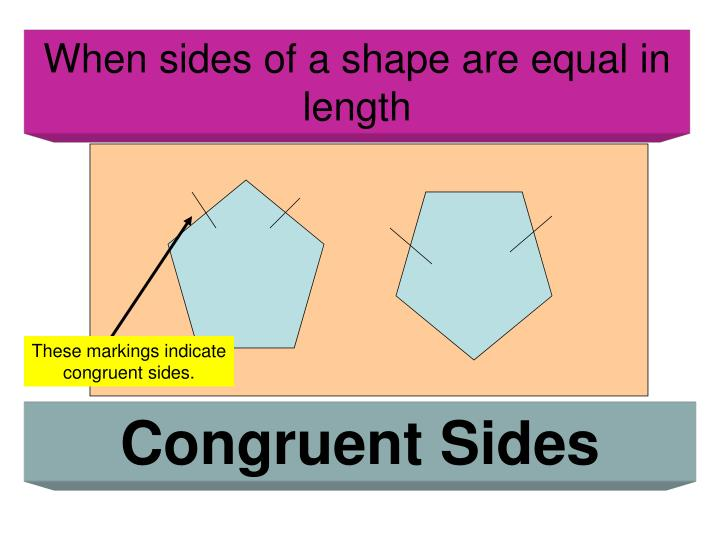 These markings indicate congruent sides.