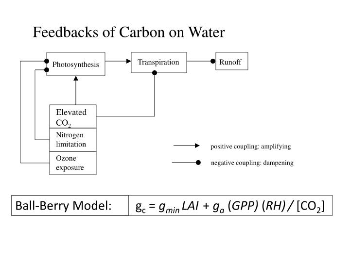 Feedbacks of Carbon on Water