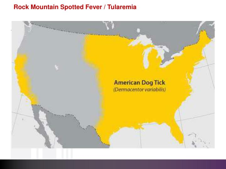 Rock Mountain Spotted Fever / Tularemia