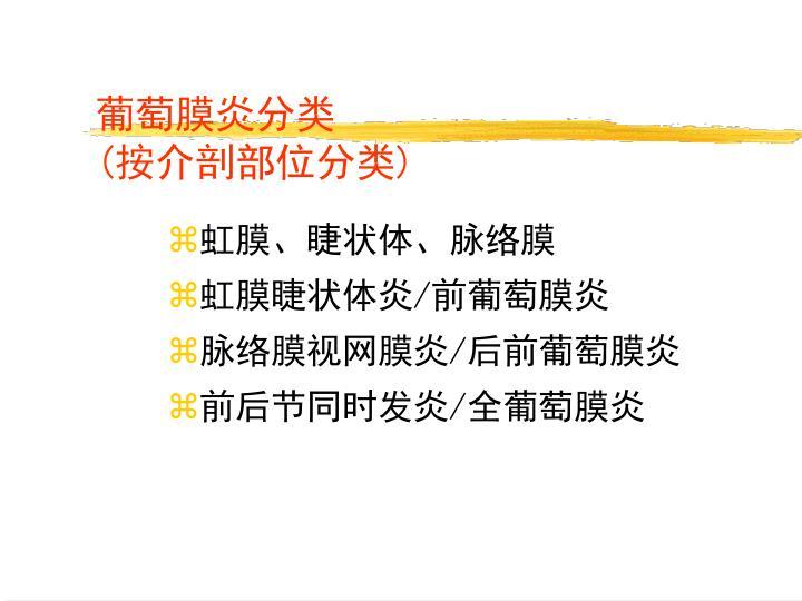 葡萄膜炎分类
