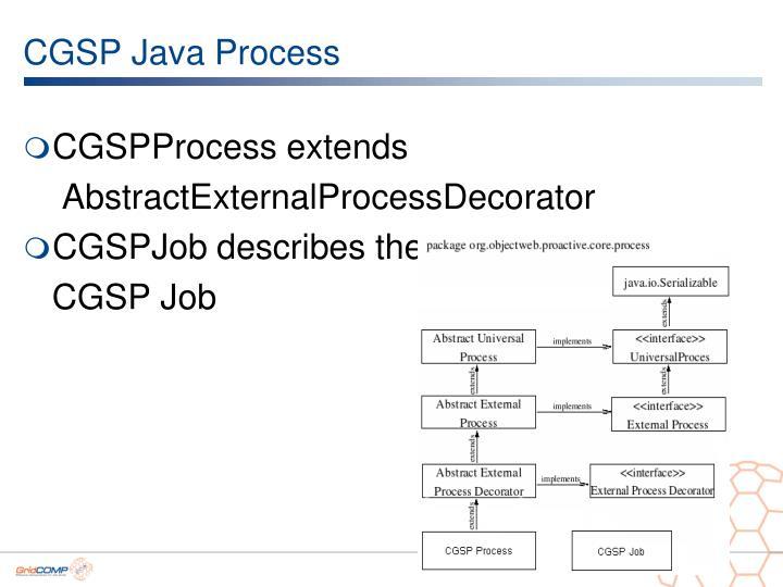 CGSP Java Process