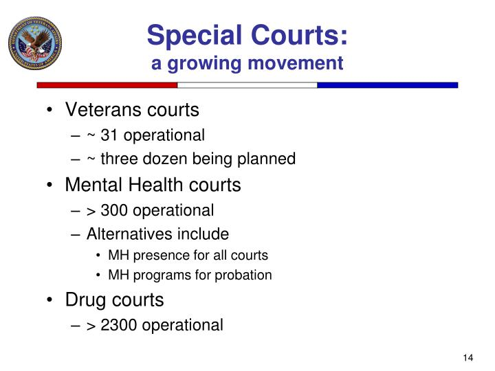 Special Courts: