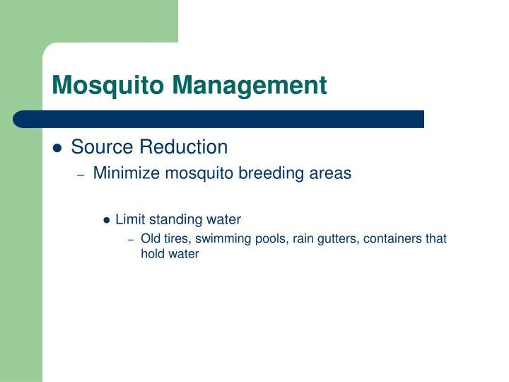 Mosquito Management