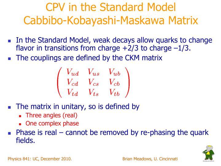 CPV in the Standard Model