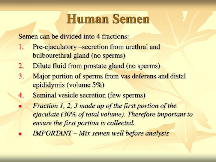 Human Semen