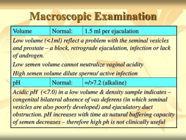 Macroscopic Examination