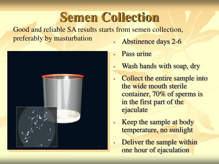 Semen Collection