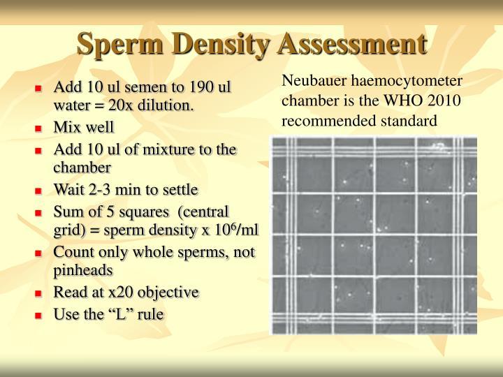 Sperm Density Assessment