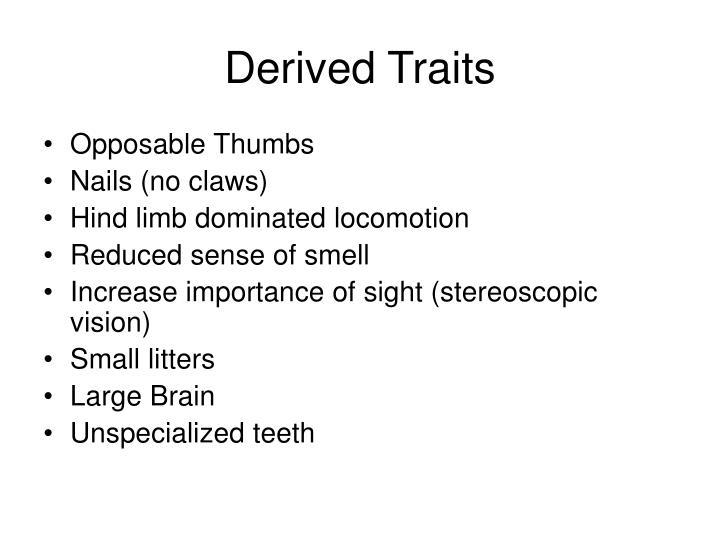 Derived Traits