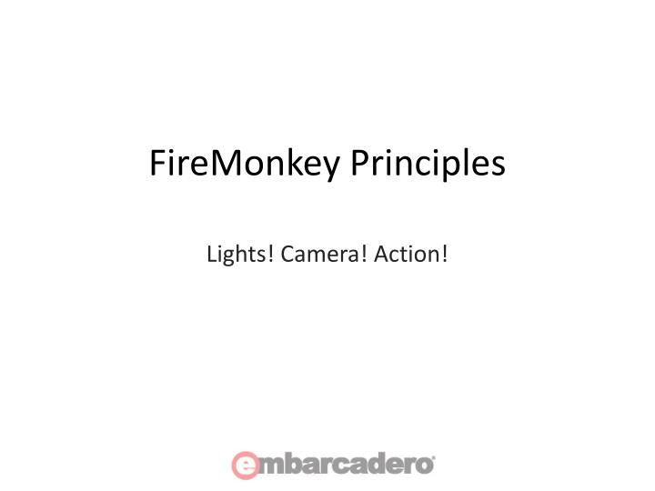 FireMonkey Principles