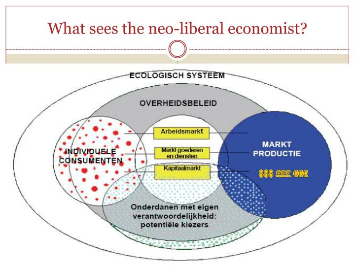 What sees the neo-liberal economist?