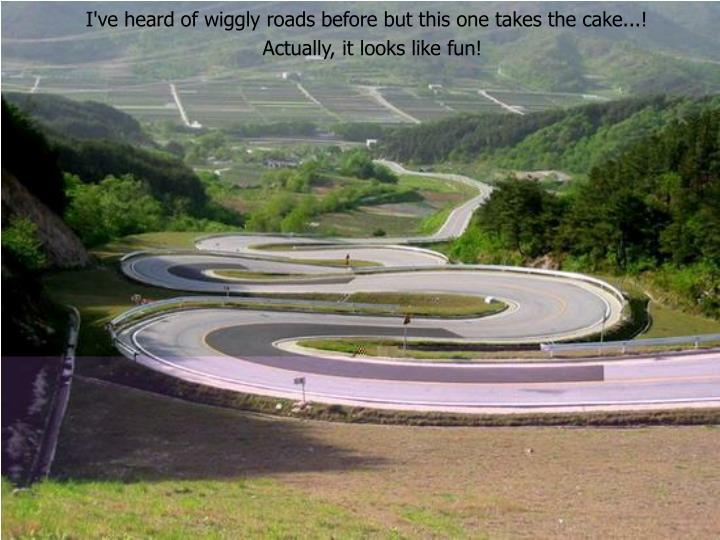 I've heard of wiggly roads before but this one takes the cake...!