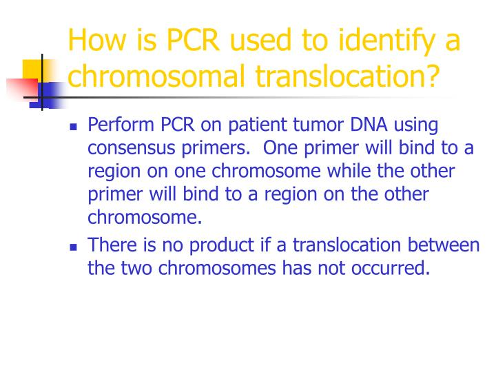 How is PCR used to identify a chromosomal translocation?