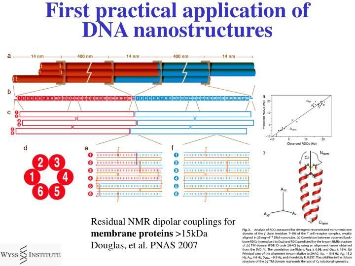 First practical application of DNA nanostructures