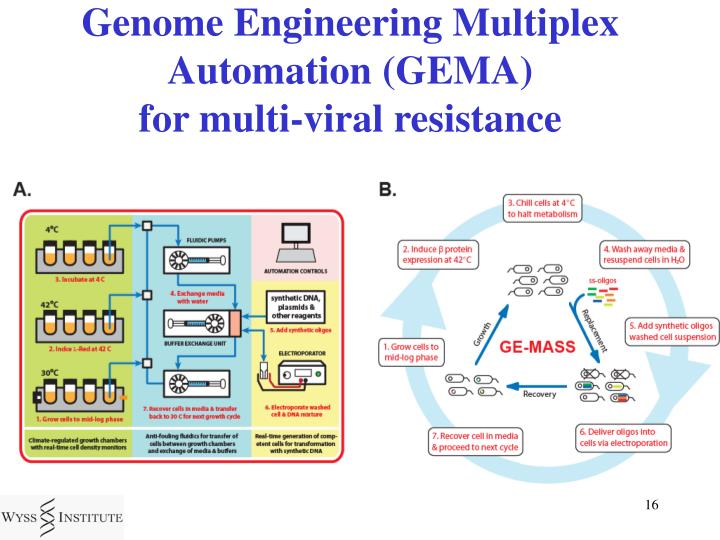Genome Engineering Multiplex Automation (GEMA)