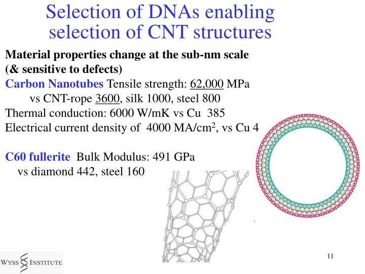 Selection of DNAs enabling selection of CNT structures