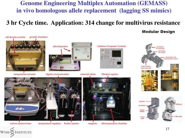 Genome Engineering Multiplex Automation (GEMASS)