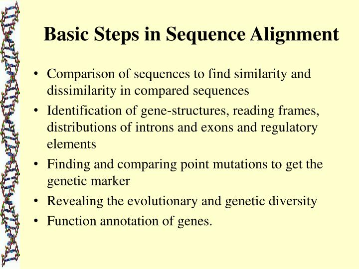 Basic Steps in Sequence Alignment