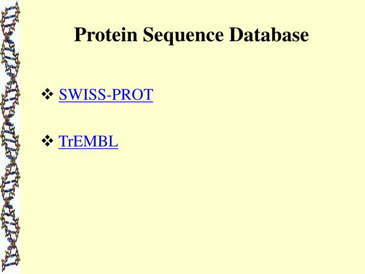 Protein Sequence Database