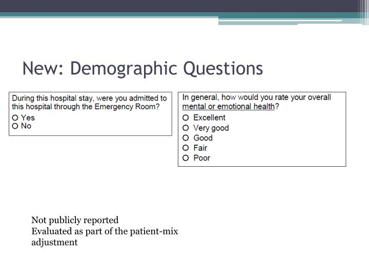 New: Demographic Questions