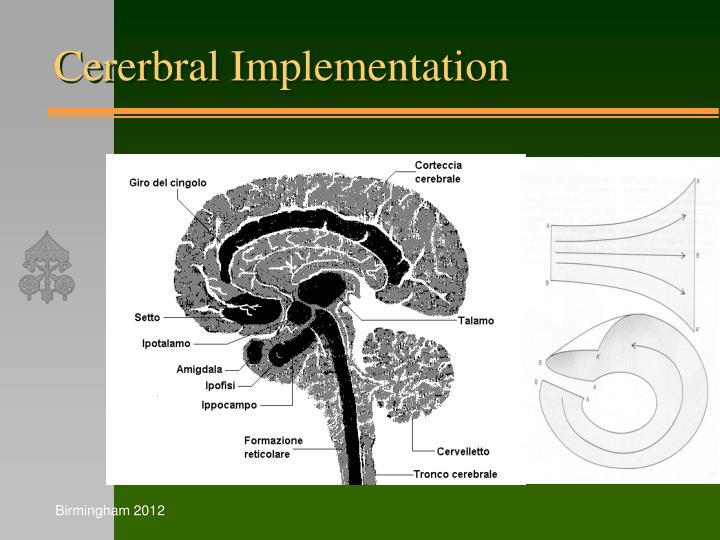 Cererbral Implementation