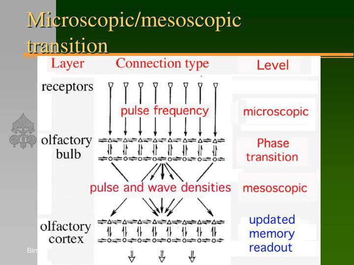 Microscopic/mesoscopic transition