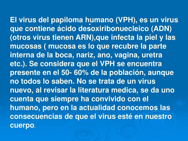 El virus del papiloma humano (VPH), es un virus que contiene ácido desoxiribonuecleico (ADN) (otros virus tienen ARN),que infecta la piel y las mucosas ( mucosa es lo que recubre la parte interna de la boca, nariz, ano, vagina, uretra etc.). Se considera que el VPH se encuentra presente en el 50- 60% de la población, aunque no todos lo saben. No se trata de un virus nuevo, al revisar la literatura medica, se da uno cuenta que siempre ha convivido con el humano, pero en la actualidad conocemos las consecuencias de que el virus esté en nuestro cuerpo