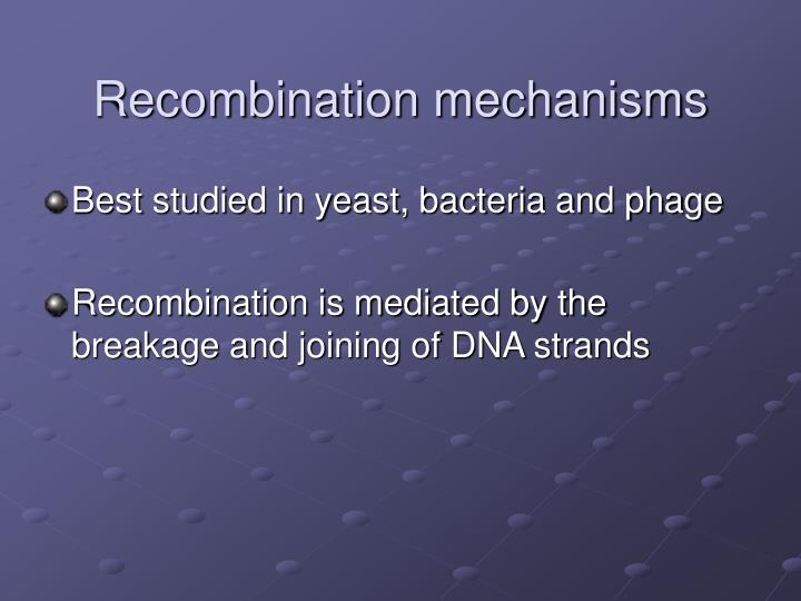 Recombination mechanisms