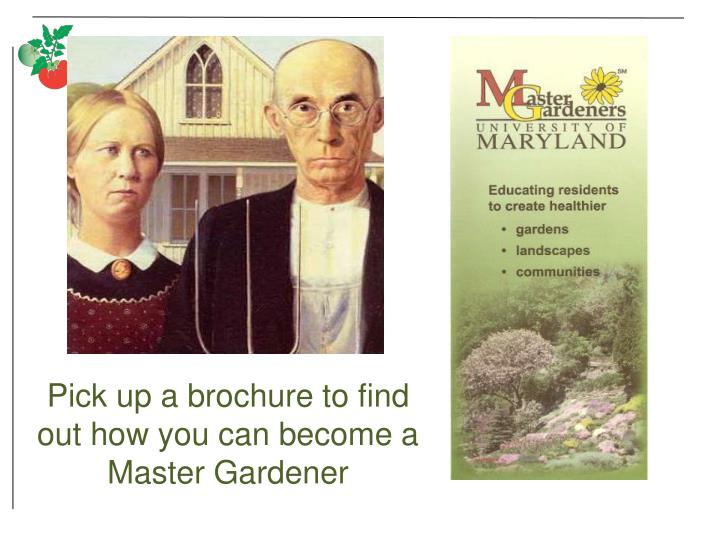 Pick up a brochure to find out how you can become a Master Gardener