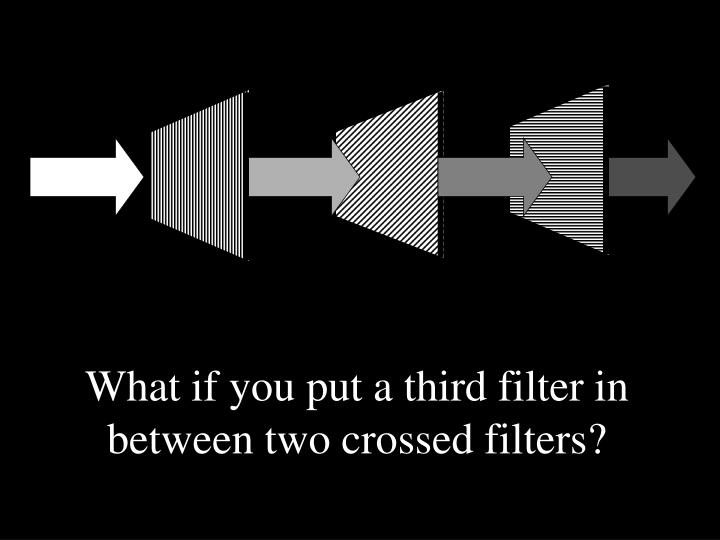 What if you put a third filter in between two crossed filters?