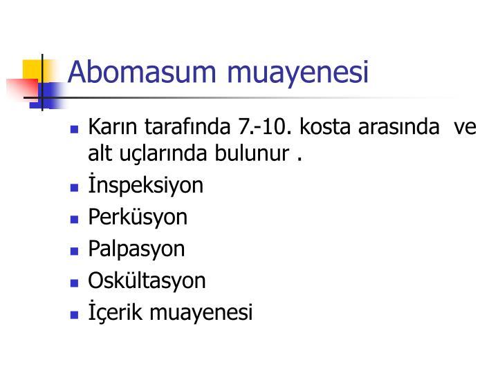 Abomasum muayenesi