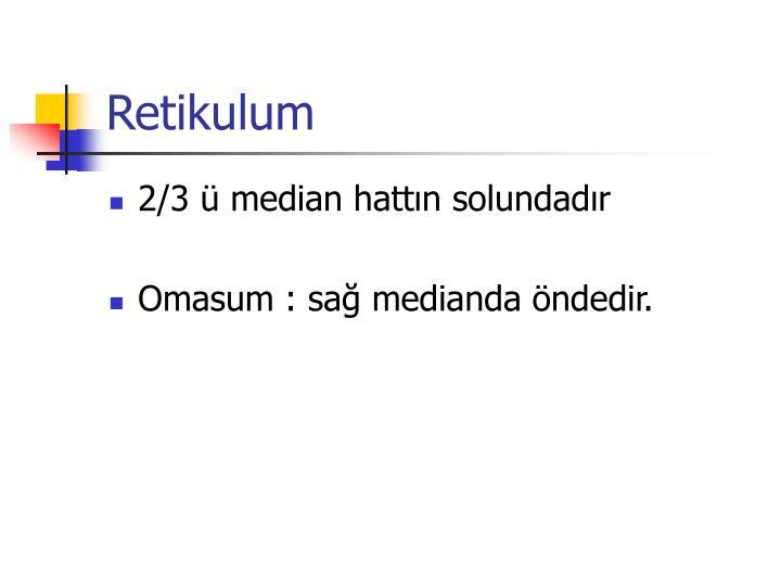 Retikulum