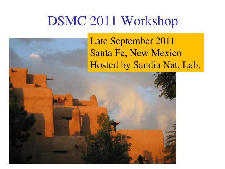DSMC 2011 Workshop