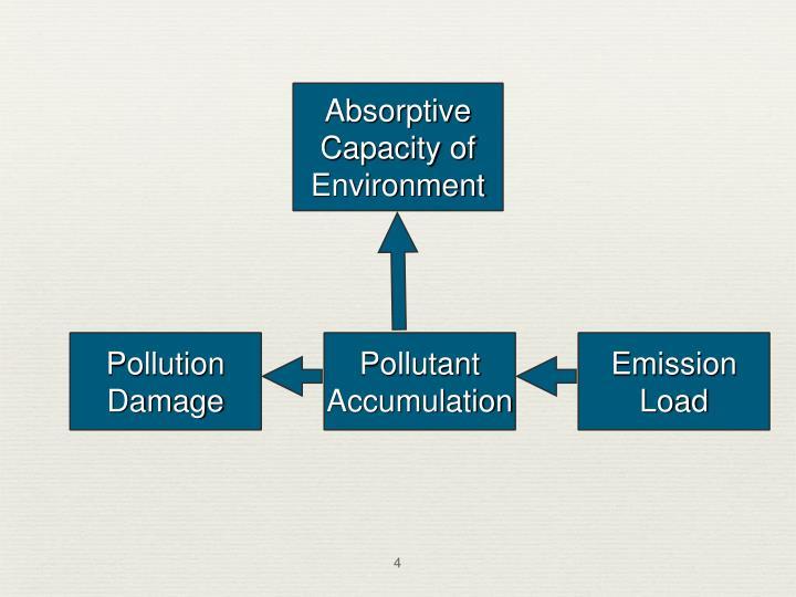 Absorptive Capacity of Environment
