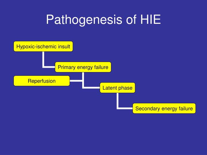 Pathogenesis of HIE