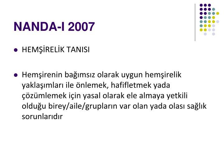 NANDA-I 2007
