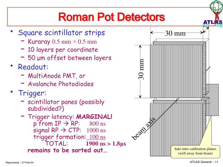 Roman Pot Detectors