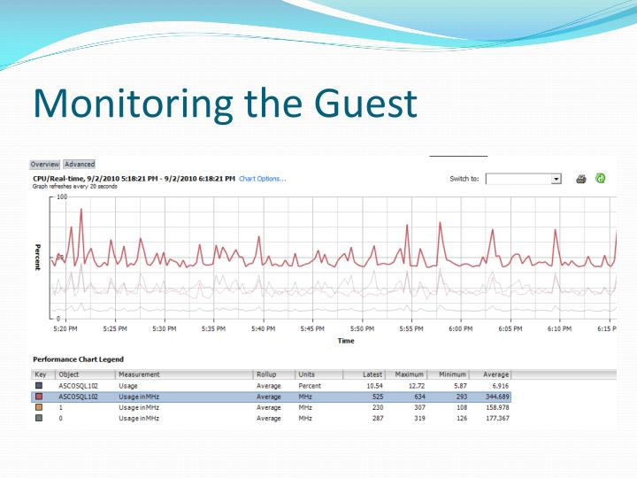 Monitoring the Guest