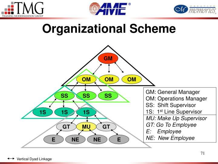 Organizational Scheme