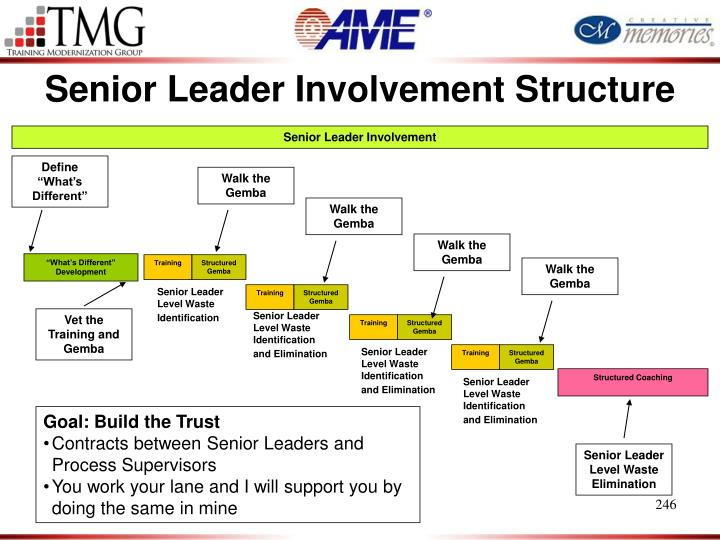 Senior Leader Involvement Structure