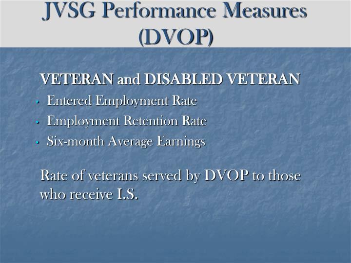 JVSG Performance Measures (DVOP)