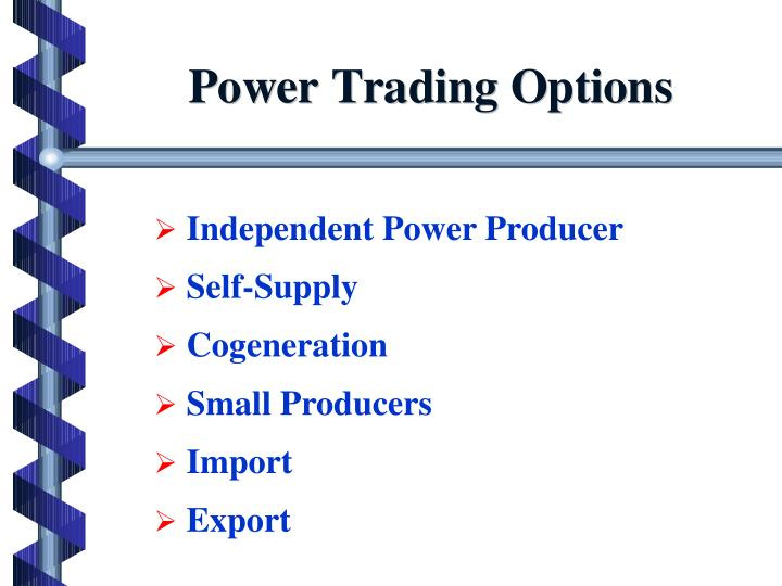 Independent Power Producer