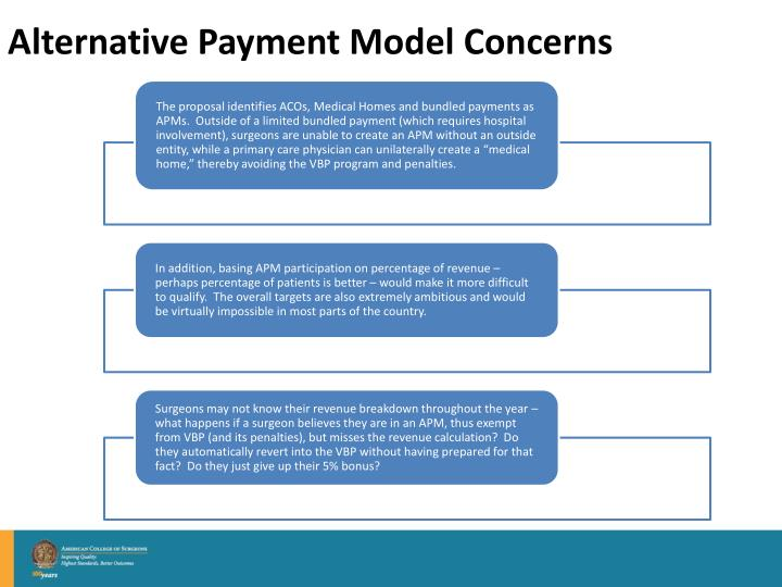 Alternative Payment Model Concerns