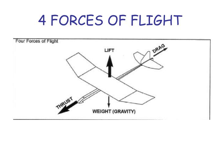 4 FORCES OF FLIGHT