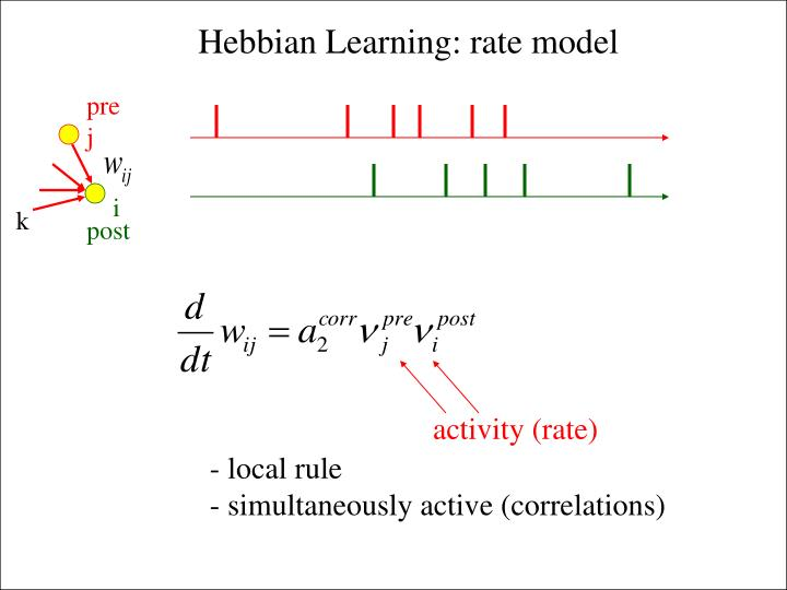 activity (rate)