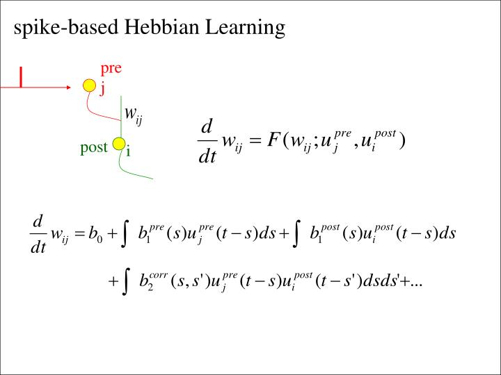 spike-based Hebbian Learning